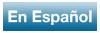 En Espanol Button Icon
