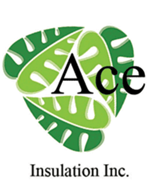 Ace Insulation