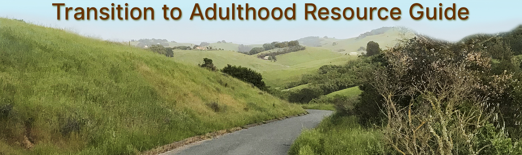 Transition to Adulthood Resource Guide